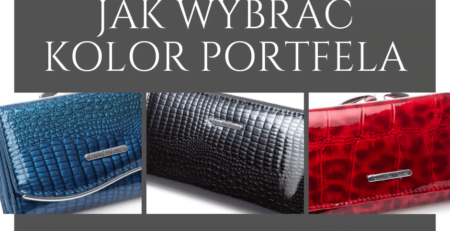 Wpis Jak wybrać kolor portfela